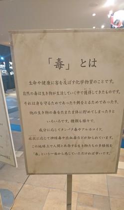 DSC_0677 (2).JPG